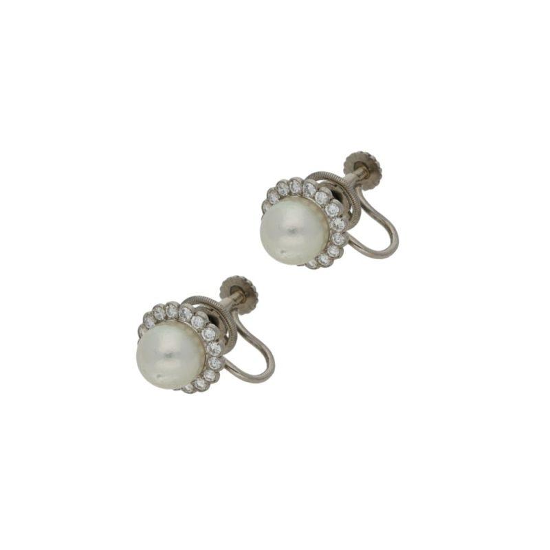 Pearl and diamond screwback earrings